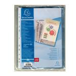 Pochettes transparentes perforées en polypropylène par 50